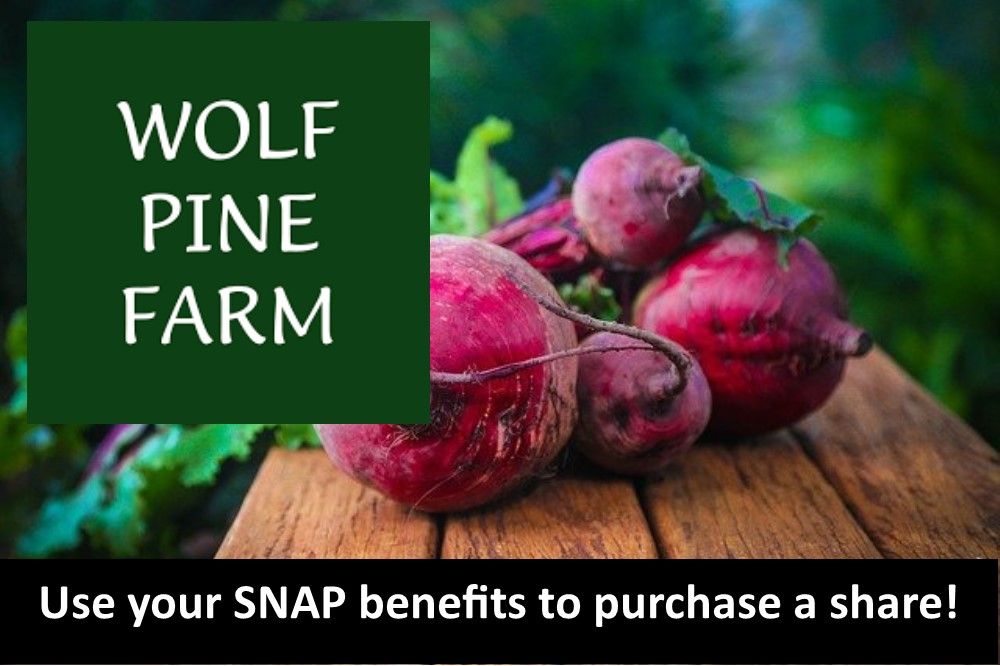 Use your SNAP benefits to pay for CSA shares